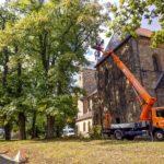 Baumpflege mit Kran vor Kirche